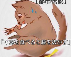 イカを食べて腰を抜かす猫