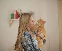 女性にだっこされている猫