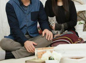二人の人間と猫