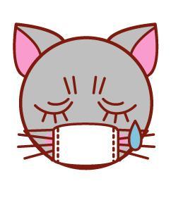 風邪引き猫