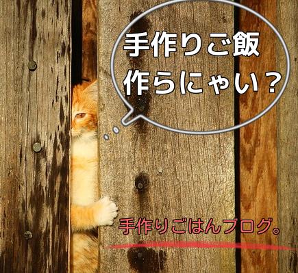 手作り猫ごはん