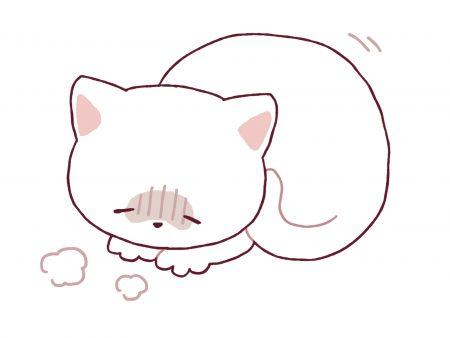 具合の悪い猫