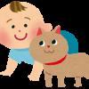 トキソプラズマは本当に危険?!猫と赤ちゃんが仲良く同居するために