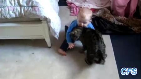 cat-love-baby-14